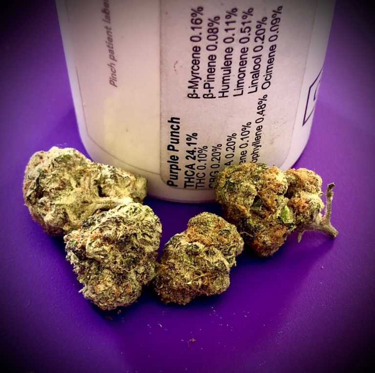 Purple Punch by Curio
