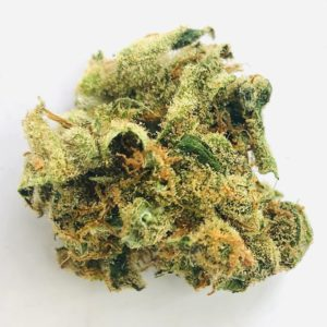 isolated bud of lemon skunk