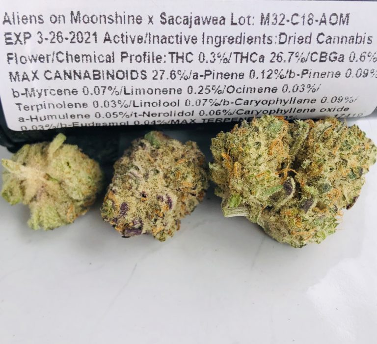 Aliens on Moonshine x Sacajawea strain