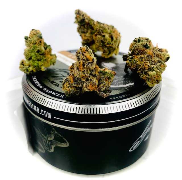 pie crust strain buds on grow west tin container