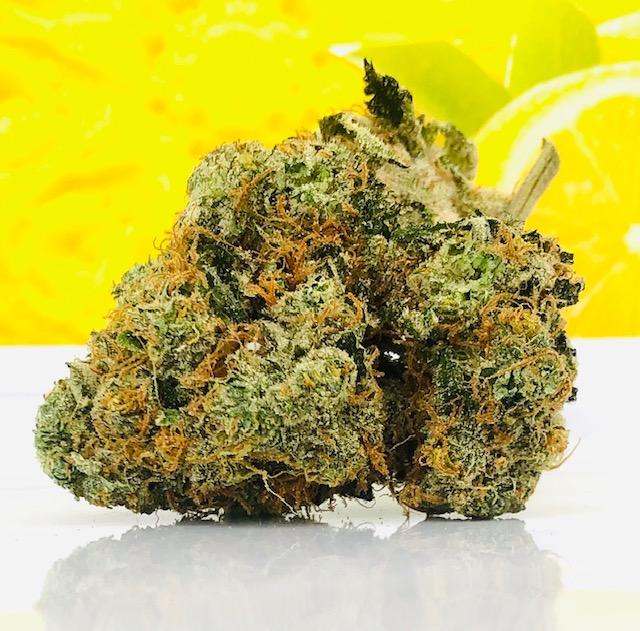 Sour Lemon strain by Curio Wellness