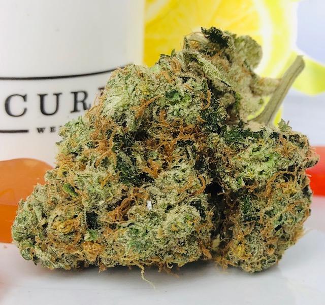 bud of Sour Lemon strain by Curio Wellness