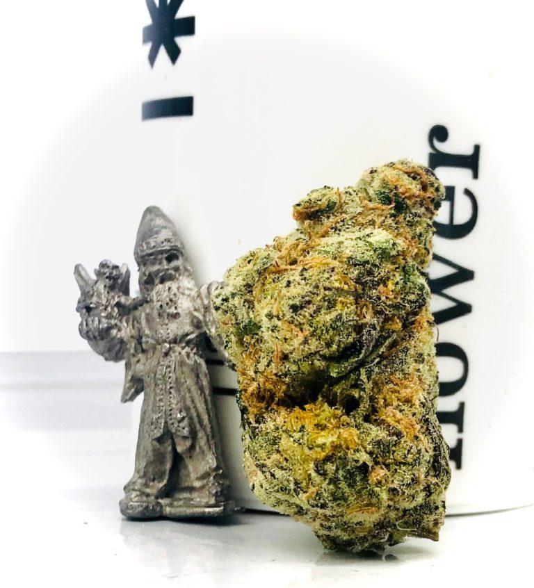 wizard gum cannabis strain bud standing up