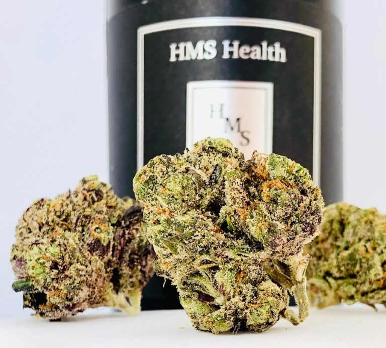 buds of bully kush by hms