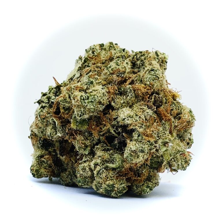 gorgeous bud of afghani by hms on white background