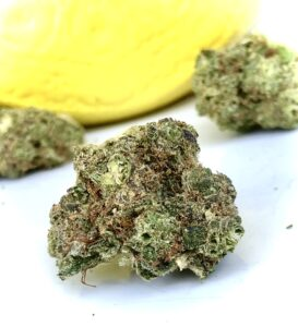 some buds of lemon grenades by grassroots