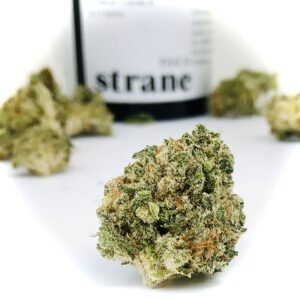 round shaped bud of grandpas stash in foreground with out of focus buds and container in background