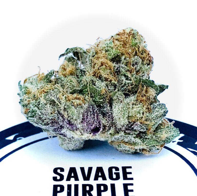 savage purple on culta lid
