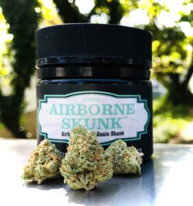 three beautiful buds of airborne skunk in front of evermore container