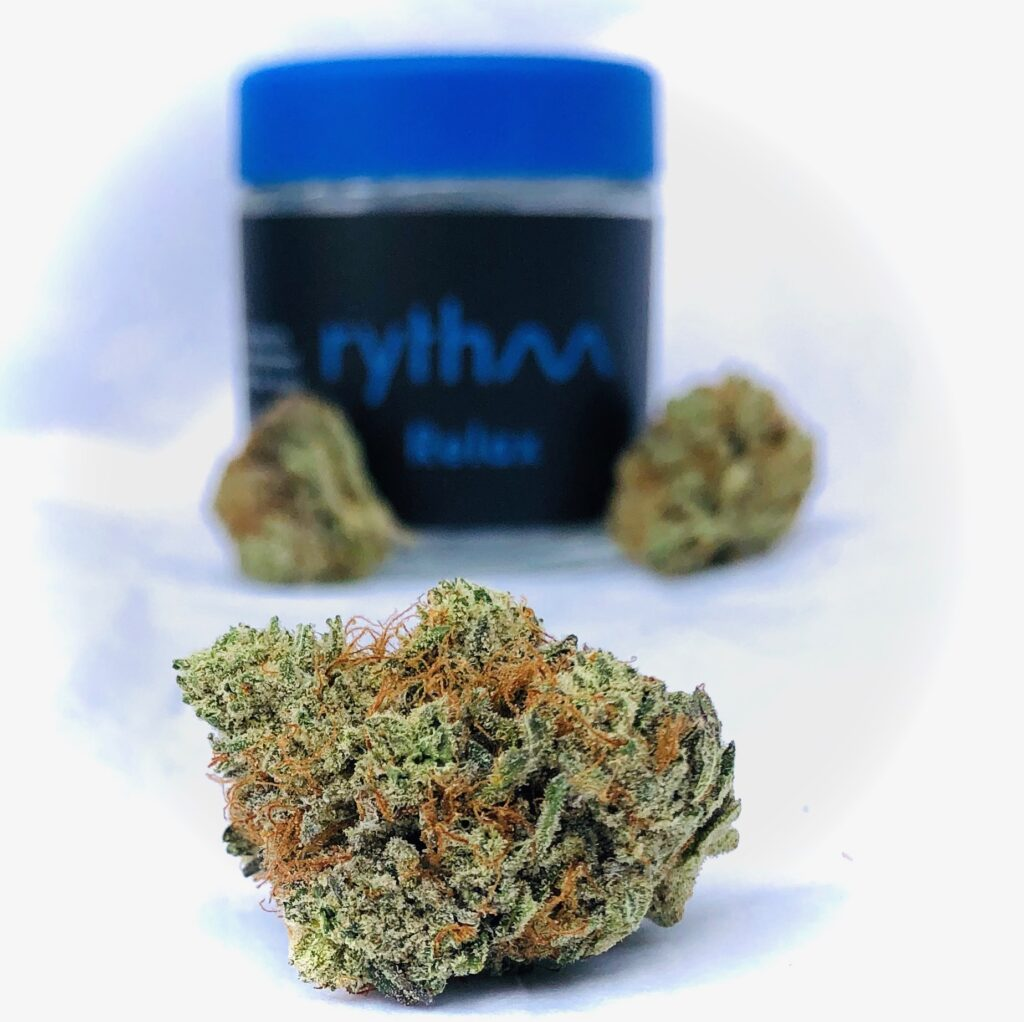 bud of black afghan in foreground with buds and container with blue screw top in background