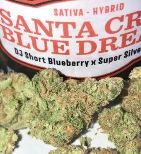 detail shot of santa cruz blue dream evermore buds