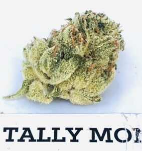 tally mon batch two close up bud with on strane label