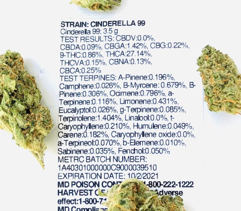 terpene and potency label for cindarella 99 with buds on perimeter