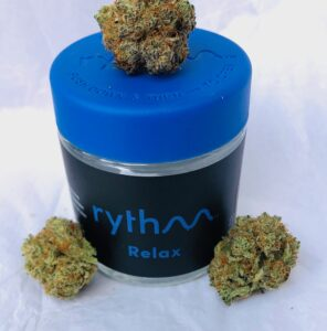 three buds of black afghani on blue lid of rythm container
