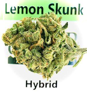 lemon skunk bud on lemon skunk by sunmed label
