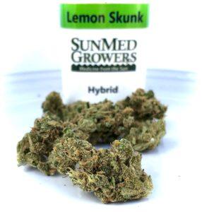 lemon skunk buds in front of sunmed bottle