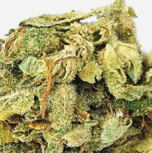 close detail of stardawg cannabis strain leaf structure stigma trichomes