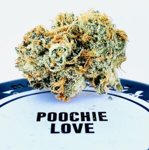 detail closeup of poochie love bud on top of culta container with label with the words poochie love